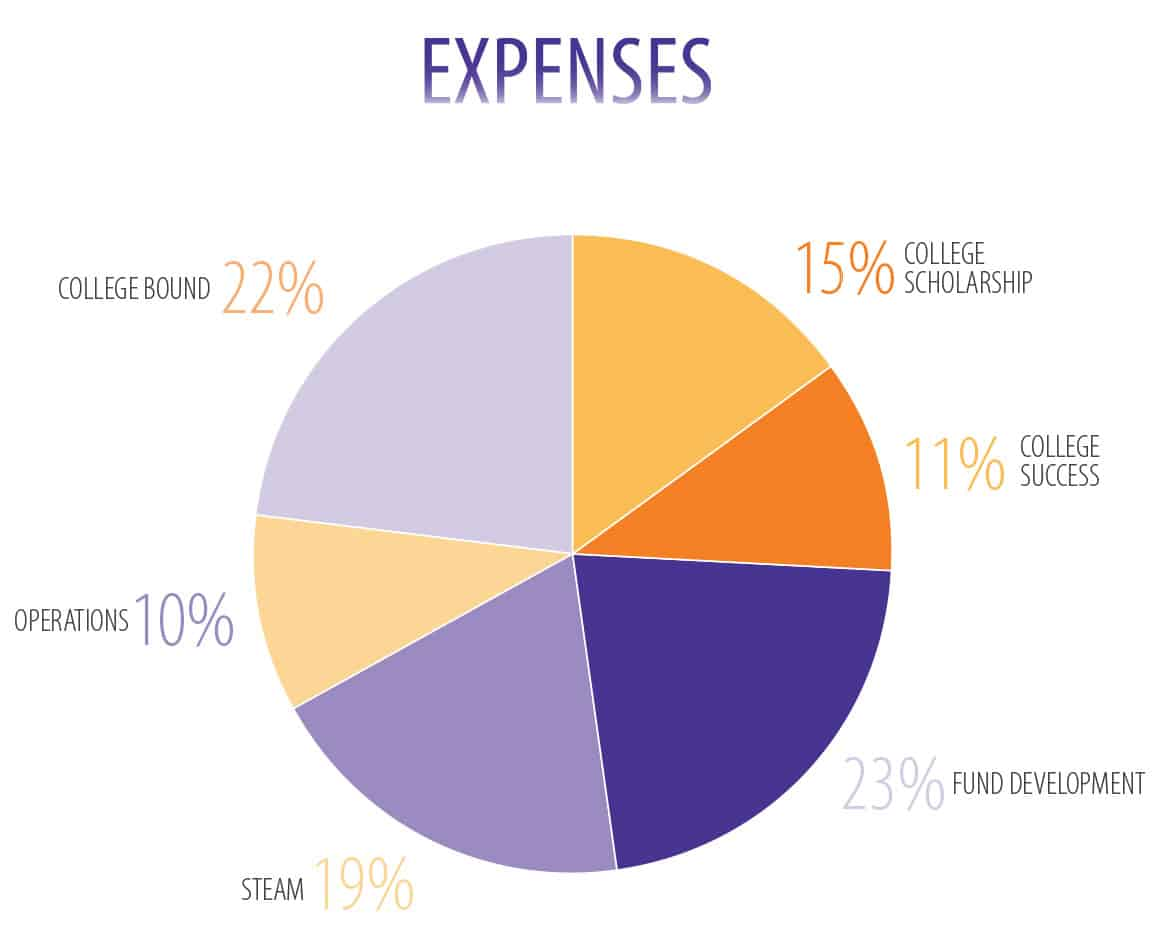 fce fy17 pie charts expense